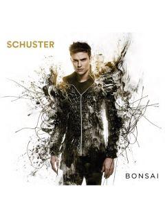 Schuster-Bonsai